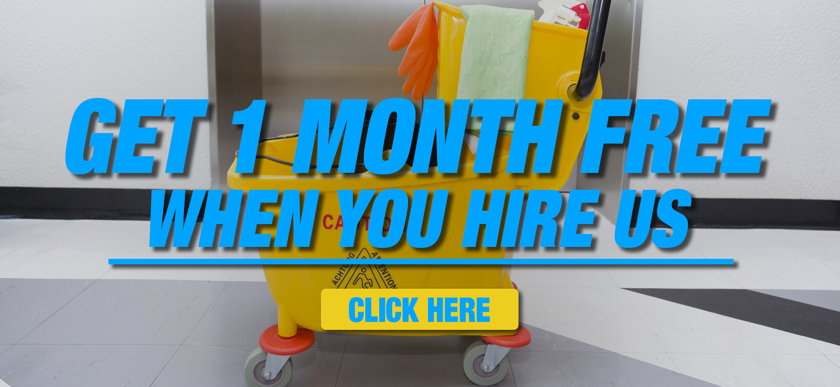 Special 1 Month Offer - New Look Maintenance